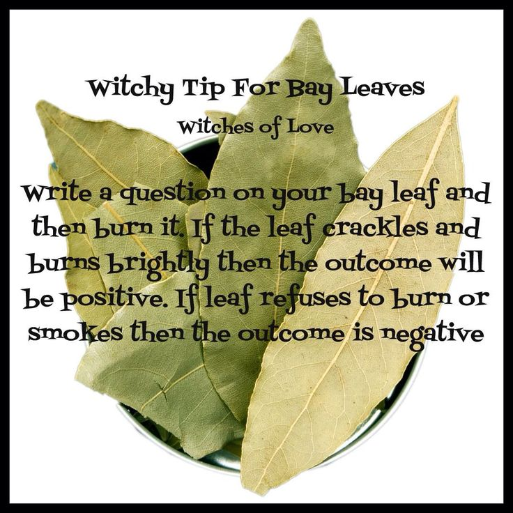 Witchy tip                                                                                                                                                                                 More