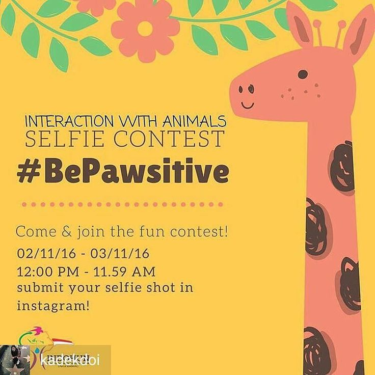 @Regrann_App from @kadekdoi -  Interaction With Animal(s) SELFIE CONTEST  Hello One Health people  3 November is ONE HEALTH DAY. And to celebrate the moment INDOHUN invite you all to join our Selfie Contest! The theme for the selfie shot is : FUN INTERACTION WITH ANIMAL(S). It could be your pet (dog cat snake(probably) etc.) or animals that you find at the zoo or etc. But you need to remember that the submitted photo has to show an interaction between you and the animal(s). Here are some…