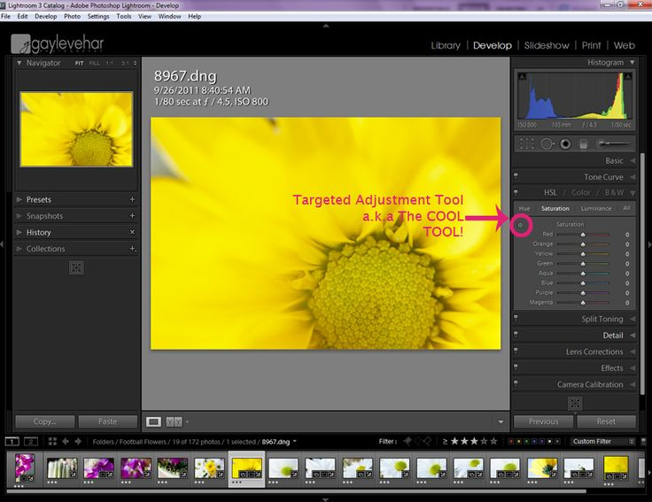 Lightroom's magic targeted adjustment brush.  http://www.lightroompresets.com/blogs/pretty-presets-blog/6161988-lightroom-s-magic-targeted-adjustment-brush