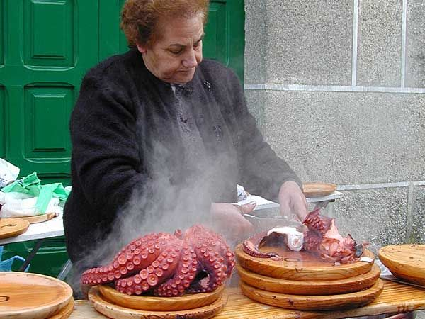 Popular octopus market in Galicia (Spain)