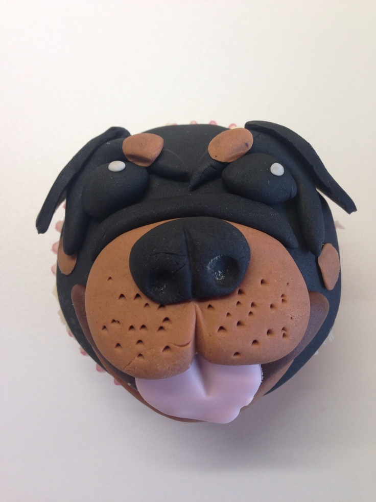 Rottweilers Food Allergies And Venison On Pinterest