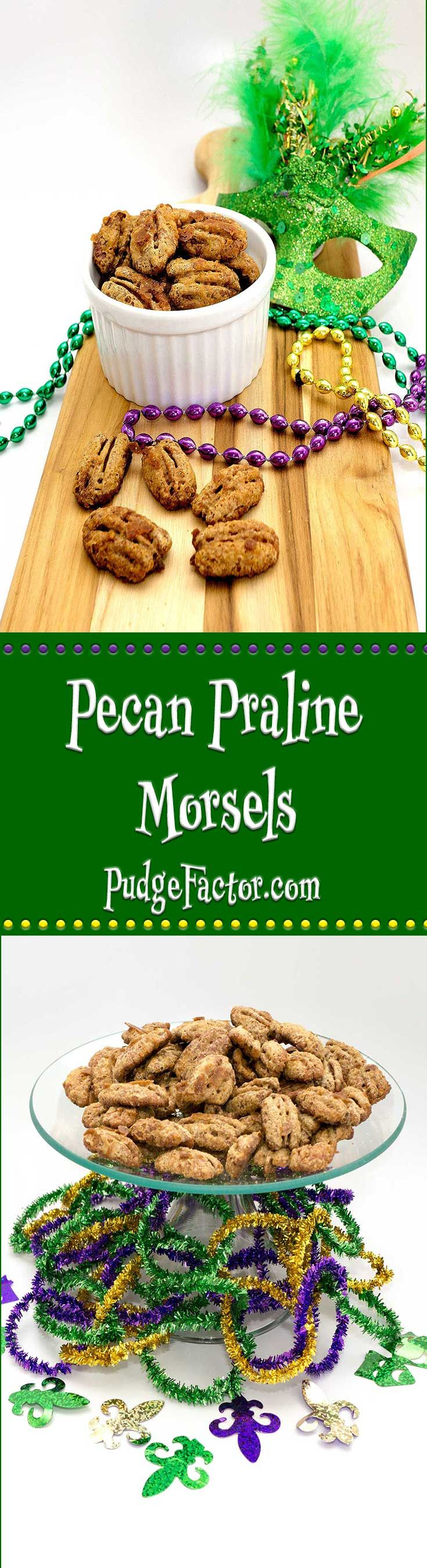 Pecan praline morsels combine pecans that are plentiful in the South with brown sugar and cream to produce an amazingly good candied nut!  via @c2king