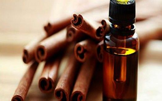 olio-essenziale-cannella TISANA X RAFFREDDORE E MUCO cannella, kiodi garofano, limone,miele, zenzero
