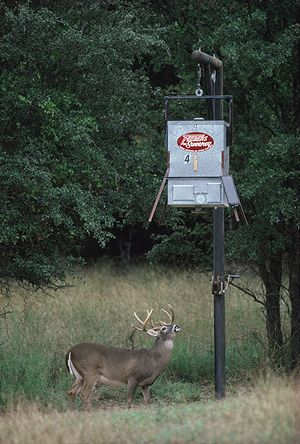 Every skilled hunter needs Sweeney's Complete Package, including 300lb. capacity scatter feeder, tripod, hanging bracket, varmint guard and solar charger. Make the most out of the season! #deer #hunting #season #feeders #SweeneyFeeders http://www.sweeneyfeeders.com/product/scatter-feeder-complete-package-300-lb/