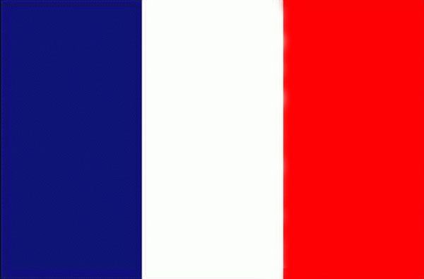 paris flag colors