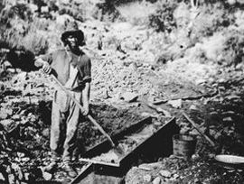 gold miner 1850s - Google Search
