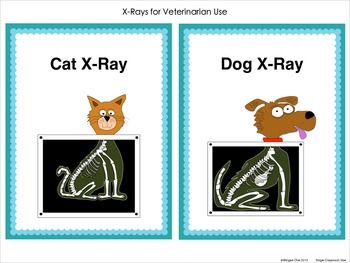 Pet Vet Dramatic Play Center - Signs, X-Rays, Examination Forms, Vaccination Certificates $