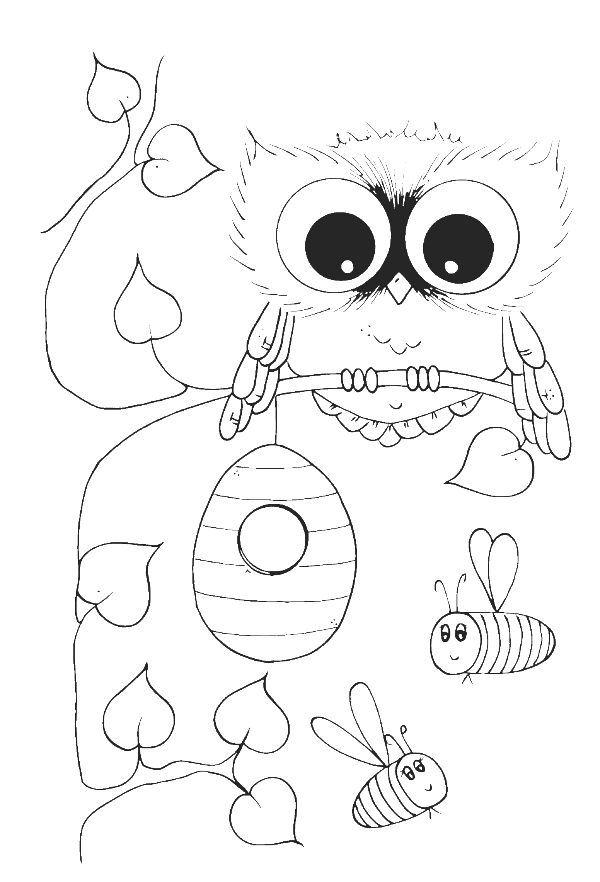 owl diaries coloring pages - photo#7