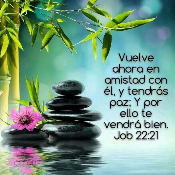 Job 22:21 ...Vuelve ahora en amistad con él, y tendrás paz; Y por ello te vendrá bien. Toma ahora la ley de su boca, Y pon sus palabras en tu corazón.