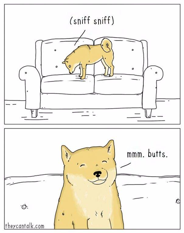 10 komiksów, które ujawniły, o czym tak naprawdę myślą nasze zwierzaki.