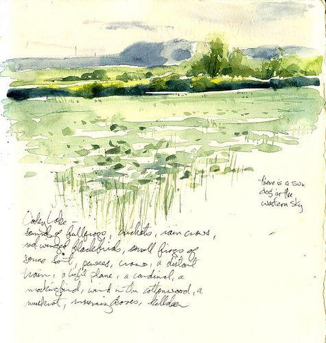 waterlily dusk | Flickr - Photo Sharing!