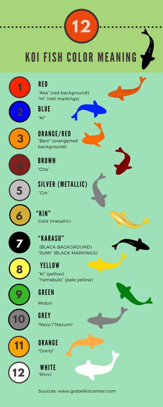 23 best crafts images on pinterest creative ideas natal for Creative fish names