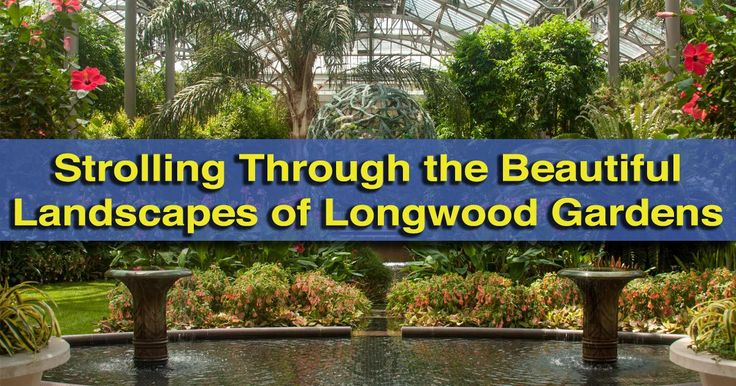 Strolling Through the Beautiful Landscapes of Longwood Gardens