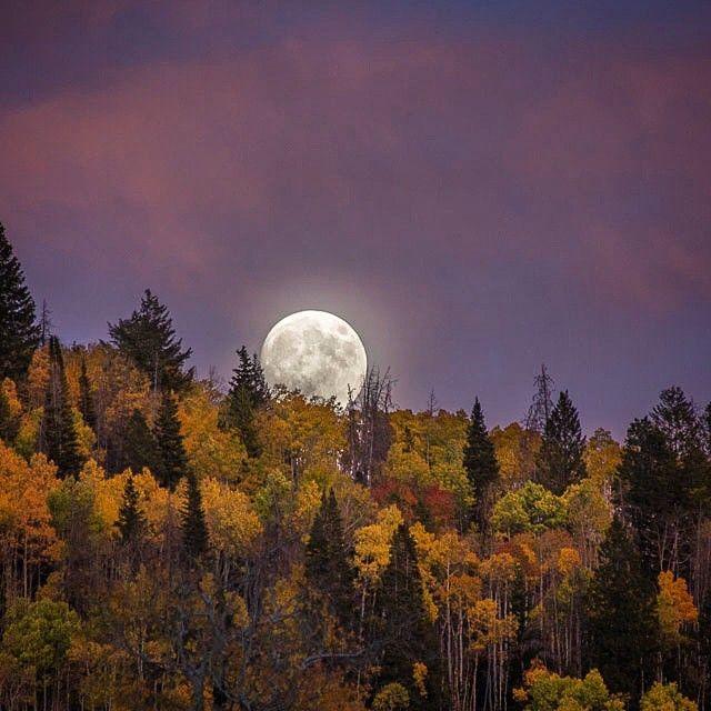 48 Best Boulder Instagram Likes Images On Pinterest