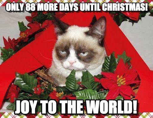 88 DAYS UNTIL CHRISTMAS!!!  ✳✳✳ www.BigAppleBargains.ca ✳✳✳