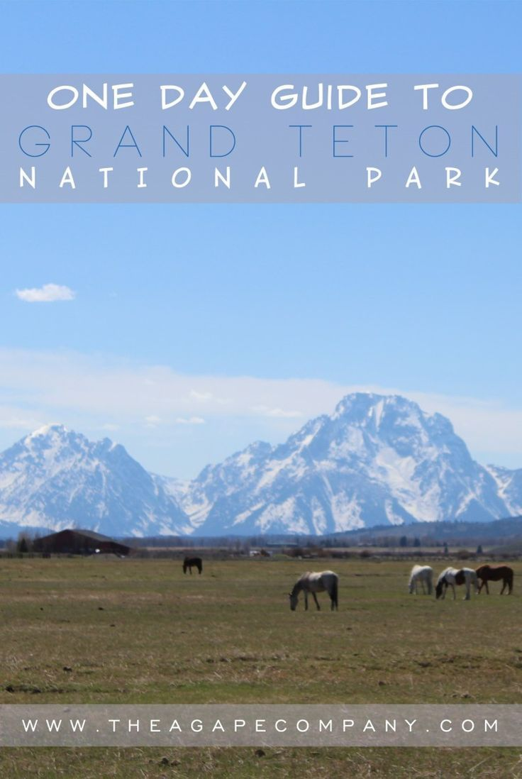 Things to do in Grand Teton National Park – 1 Day Guide