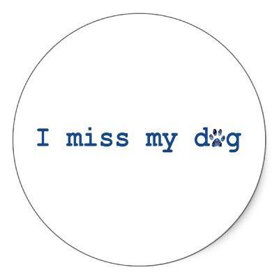 I Do -     Google Image Result for http://rlv.zcache.com/i_miss_my_dog_sticker-p217831968786519670z8j38_400.jpg