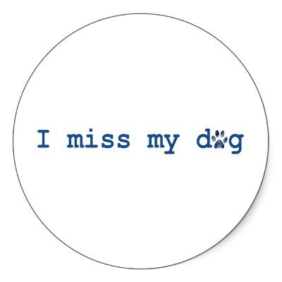 I Do -     Google Image Result for http://rlv.zcache.com/i_miss_my_dog_sticker-p217831968786519670z8j38_400.jpg