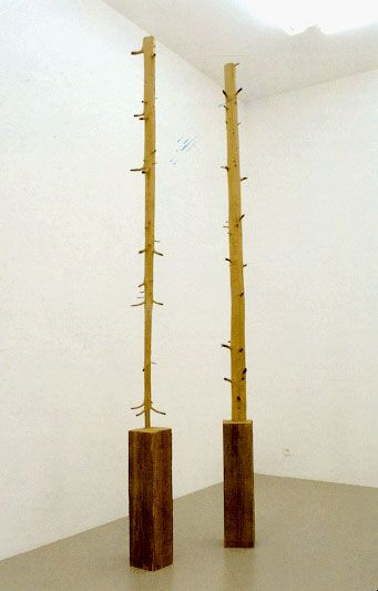 """Giuseppe Penone, (11-Meter Tree), 1989. """"In a series of sculptures begun in 1969, ... the artist chiseled through the growth rings of wooden beams to excavate tender saplings from within.... [U]sing a chainsaw and chisel to cut back the layers of growth,"""" he worked """"around the knots to reveal the internal structure of narrow core and developing branches.... [P]art of the beam is left untouched to signify its status as a manmade object."""" Caption from link"""