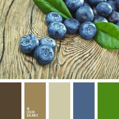 Los tonos marrones pastel, como el caqui, el marrón pálido y el color sombra, armonizarán muy bien con el azul arándano y el color verde hierba.