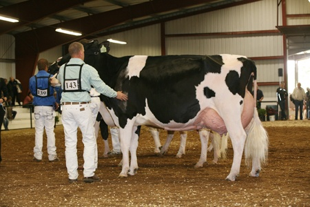 125,000 Lbs - Western Spring National  1. Legend Dairy Rhonda (Regancrest Elton Durham x Legend Dairy Terry Demand), Legend Dairy Farms1