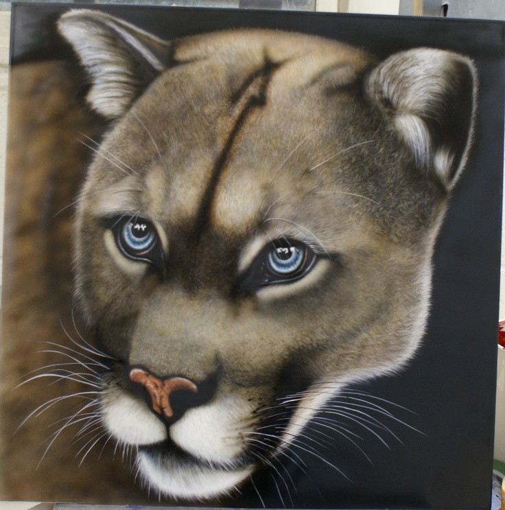 Mountain Lion painted by me !!