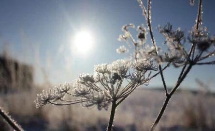 PRANOSTIKA NA UTOROK 14.3.: Lepšie, keď ťa zima chveje, než marcovo slnko hreje
