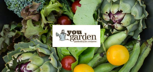 #YouGarden - the online garden centre offering great value grow your own fruit, vegetables & flowering plants delivered directly to your door by post.Deals at #VoucherBucket    https://www.voucherbucket.co.uk/stores/yougarden/