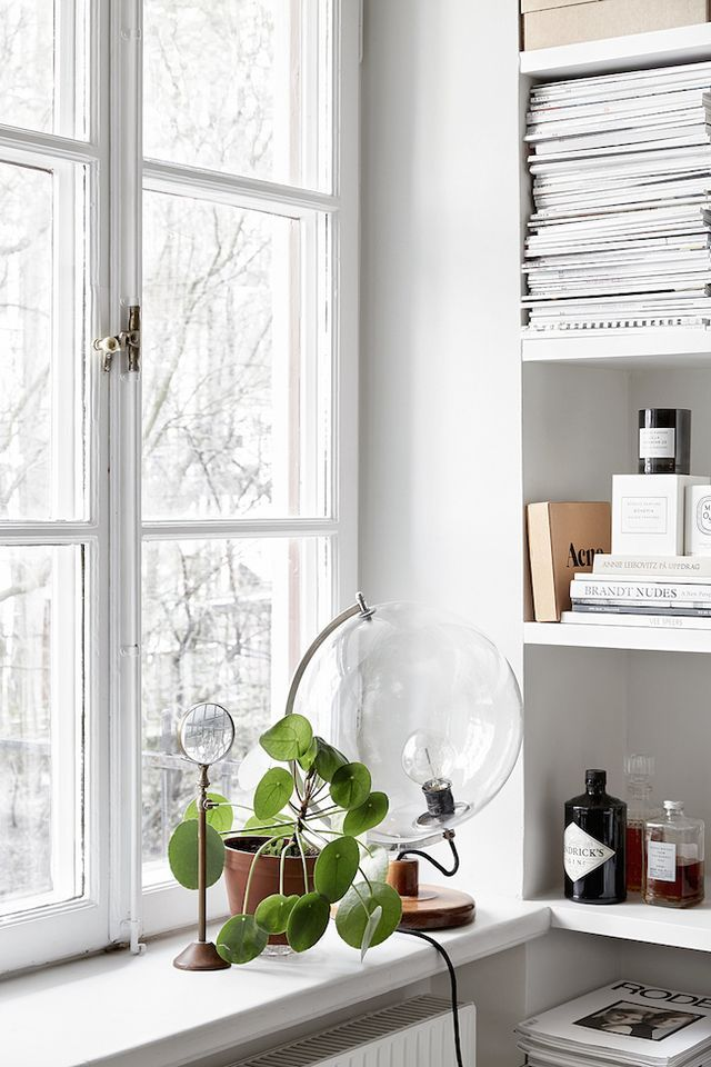 Pilea with Curious Glass Globe Lamp & Looking Glass in Stockholm Interior| Pilea Peperomioides / Chinese Money Plant / Missionary Plant | | { Houseplants 3