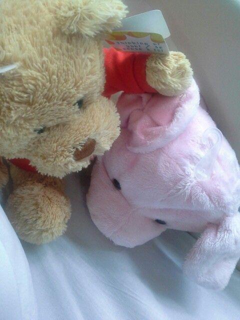Da bear lg bisik bisik sama Ni piggy #maenanbaru #iseng #newactivity