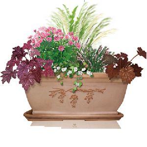 Les 52 meilleures images propos de pot es fleuries sur pinterest jardinage plantes et terrasses - Idee composition jardiniere exterieure ...