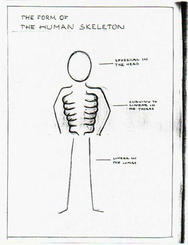 core curriculum for orthopaedic nursing 7th edition pdf