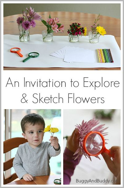 Spring Activities for Kids: An Invitation to Explore Flowers~ Buggy and Buddy