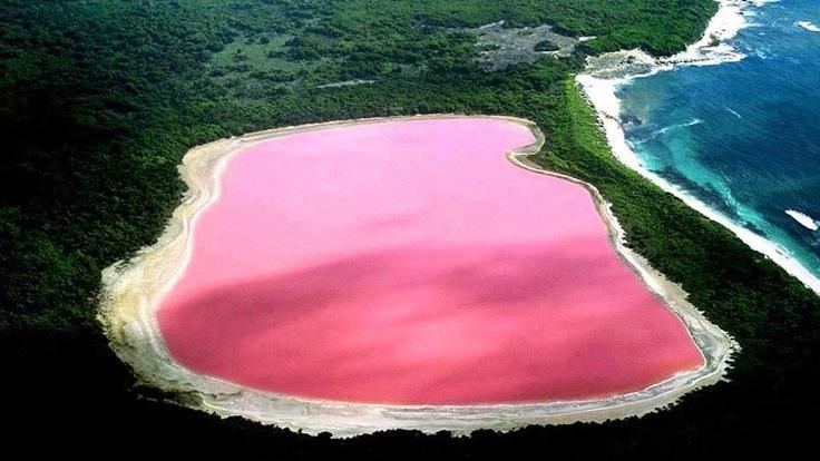 Lake Hillier    Pink Lake at Goldfields-Esperance, Western Australia  #PinkLake #WesternAustralia