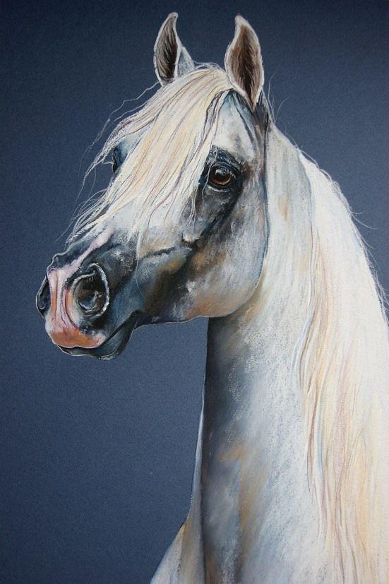 99 best images about Art: Horses on Pinterest ...