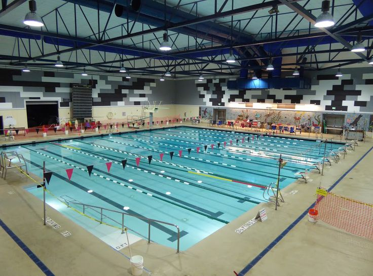 846 Best Bay Area Swimming Images On Pinterest Bay Area