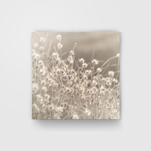 Bunga Padang Rumput dari Tees.co.id oleh PakePensil