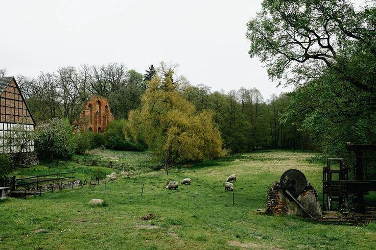 Die alte Mühle und #Kloster Ruine in #Boitzenburg. . . #visitbrandenburg #wanderung #wandern #natur#uckermark #hiking #nature #outdoor #brandenburg