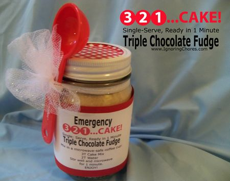 3-2-1 cake but this one has pudding in it!!! Triple Chocolate Fudge. YUM! Perfect for someone who needs a chocolate fix and only 108 calories. Double YUM YUM!  More 3, 2, 1...Cake!