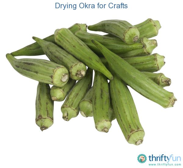 This is a guide about drying okra for crafts. In addition to being a tasty vegetable frequently used in southern cooking, okra pods ca be dried and used in arts and craft projects.