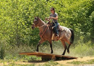 Extreme Appaloosa Makeover: The Making of a Spotted Wonder Horse: Obstacle courses and more trail rides!: