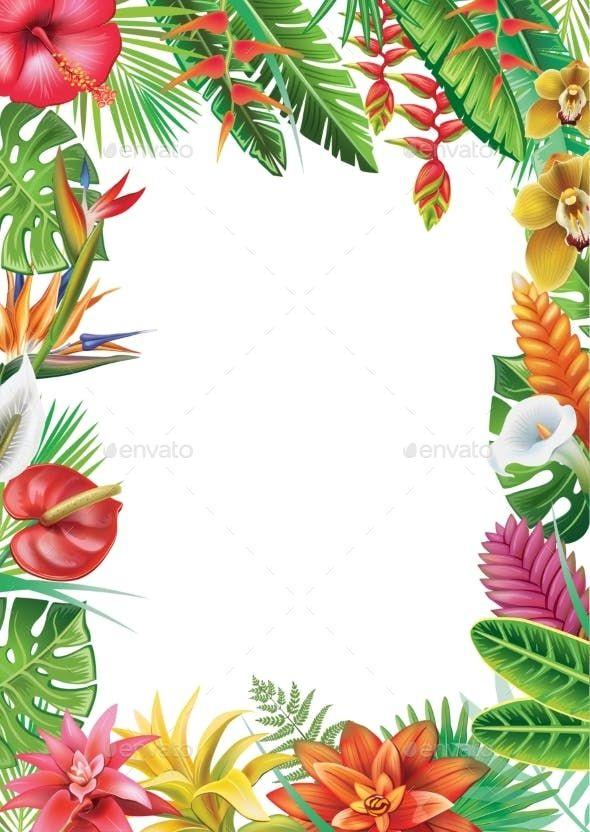 Frame From Tropical Plants Flower Illustration Tropical Illustration Tropical Frames