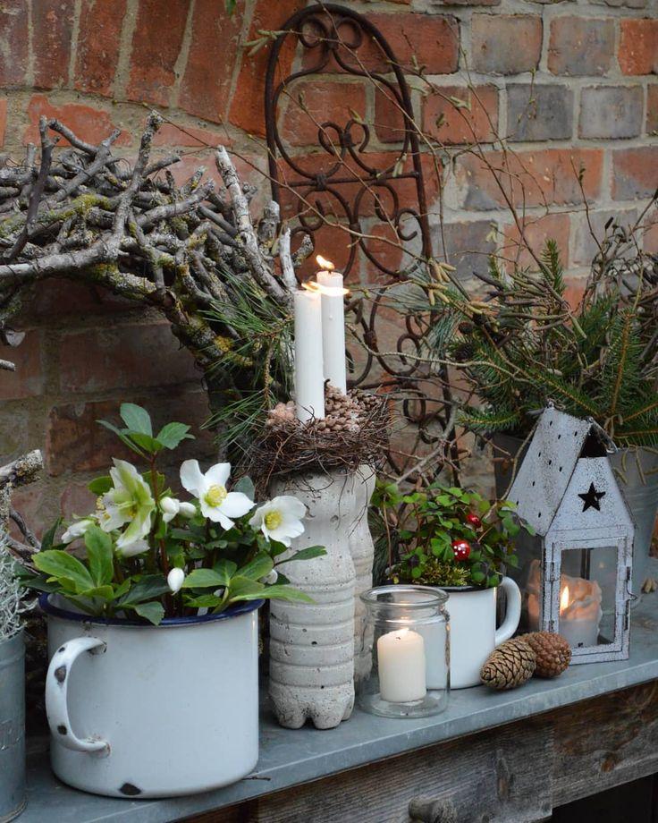 Shabby Chic Deko Ideen Weihnachten Das Beste Von Diy: Bild Könnte Enthalten: Pflanze
