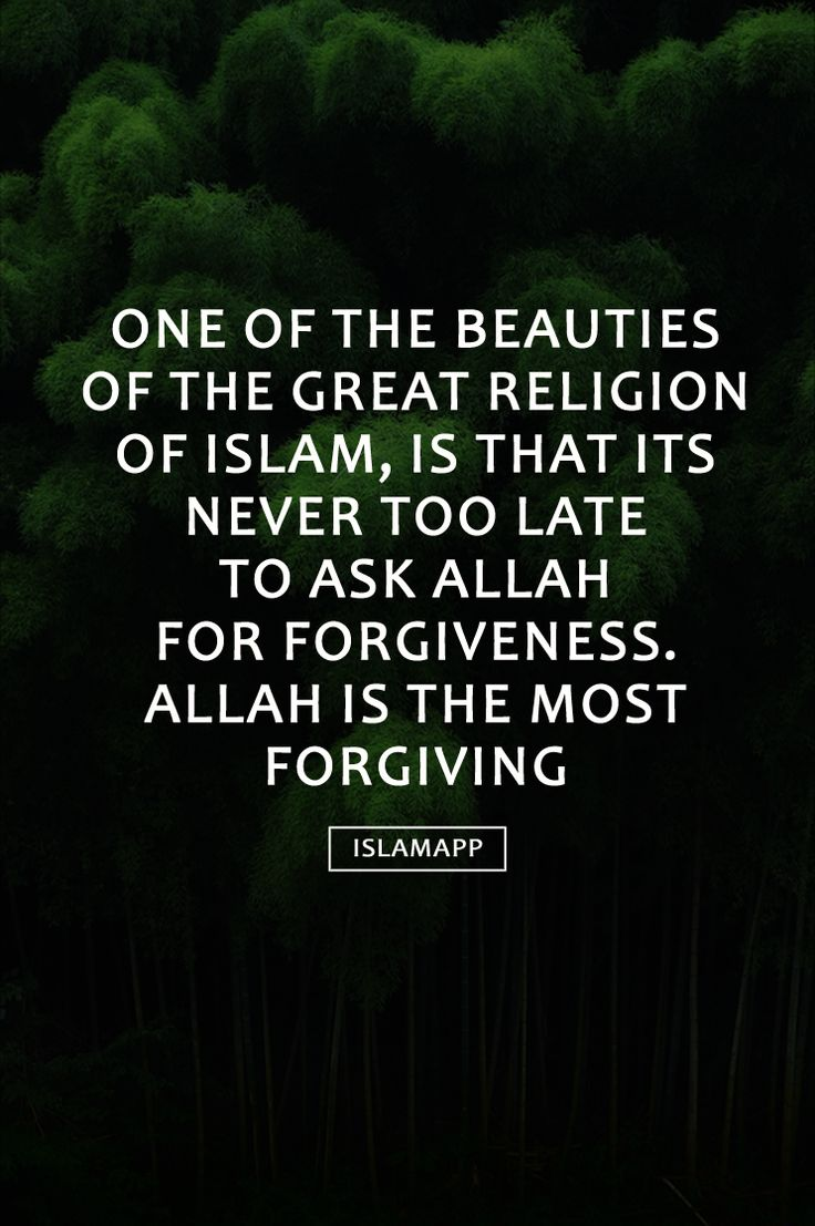 an overview of islam muslim and allah The characteristics of a muslim  the poor and needy as this is against islam  in summary a believer is one who deserves allah's pleasure and for him there .