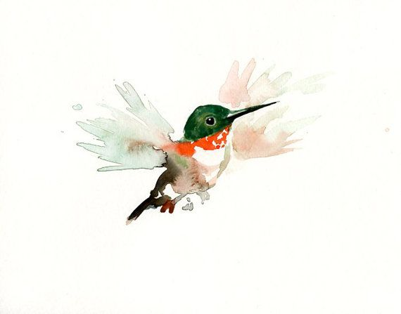 sweet hummingbird watercolor