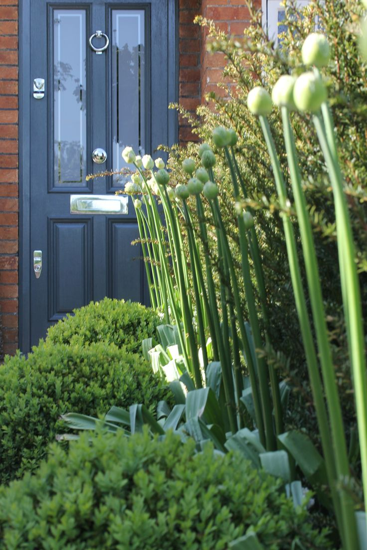 front of house concepts and creations by Hendy Curzon Gardens, door in Farrow & Ball Downpipe, gloss