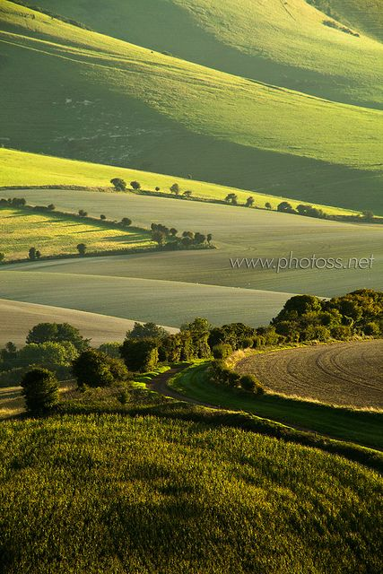 South Downs National Park near Lewes, East Sussex, England.