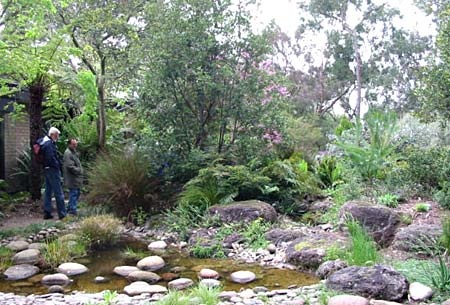 Australian Native Garden Inspiration - I think this is gorgeous, so natural. Bev Hanson's Garden, Victoria.