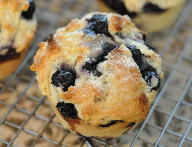 Mennonite Girls Can Cook: Blueberry Muffins