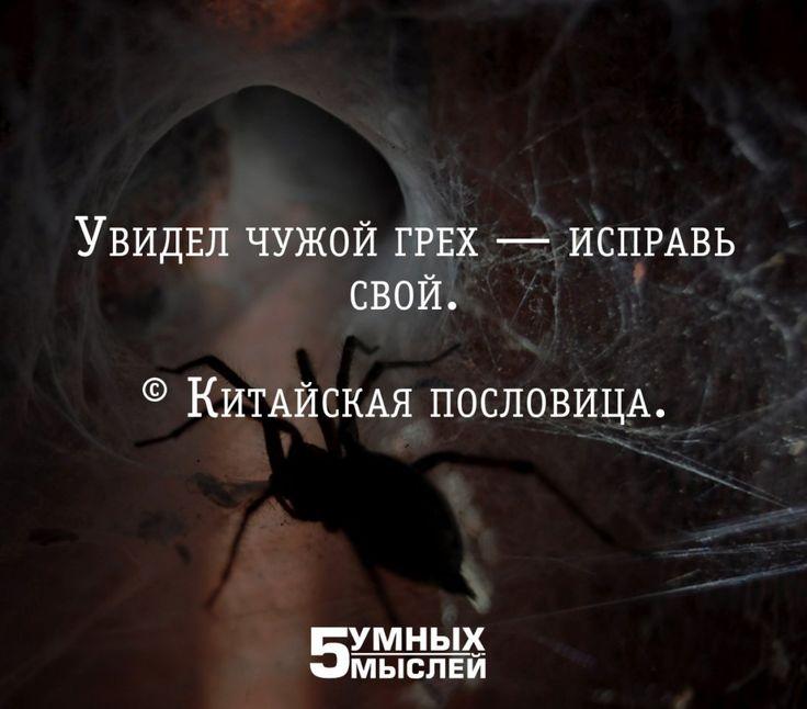 5 умных мыслей | Саморазвитие, философия | ВКонтакте